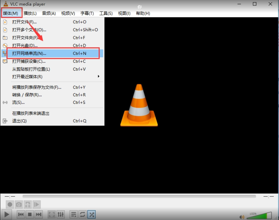 How to use VLC get RTSP video from MDVR Picture1