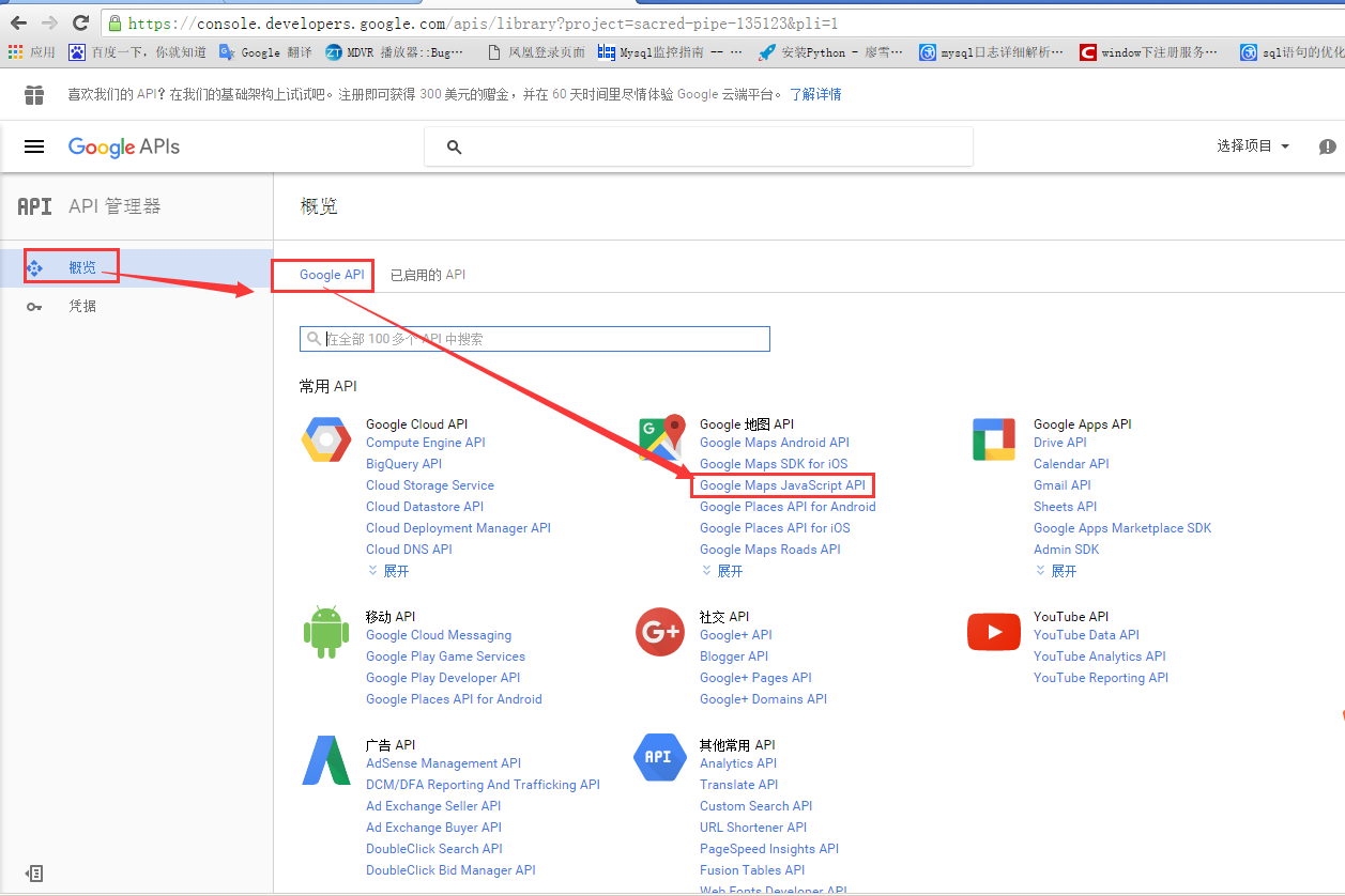 How to add Google Map API for Intelligent Vehicle Monitoring System Server Picture3